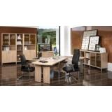 Мебель для руководителя серии Born